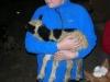 Safnadarferd_Grjoteyri_og_Vindashlid_vorid_2006_002